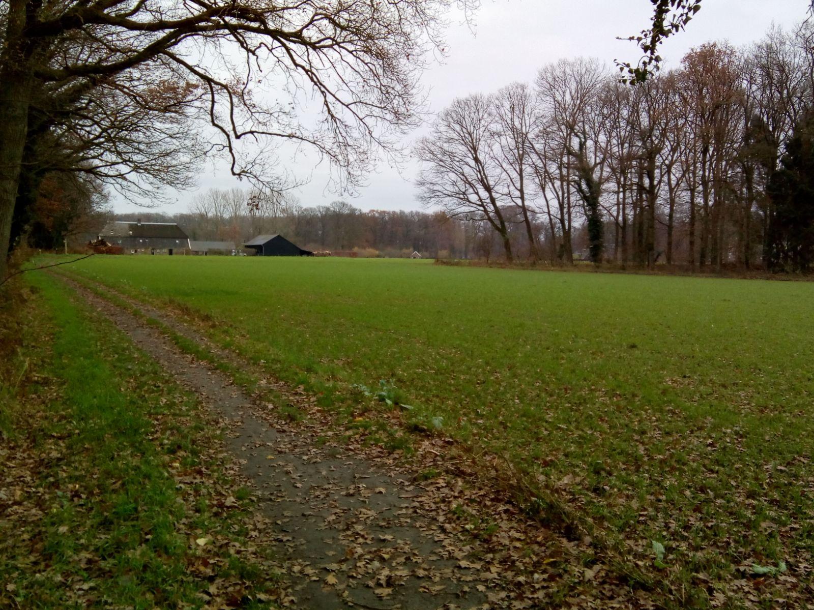 """Het """"open"""" landschap bij kasteel Hackfort bij Vorden"""