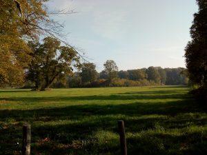 Landschap Ockhorst wandeling Wichmond / Vierakker